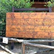 torcaldara1
